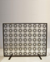 The Aster Fire Screen